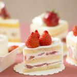 ショートケーキ4