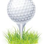 ゴルフ ティーアップ